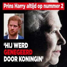 'Prins Harry als kind genegeerd door oma Elizabeth'
