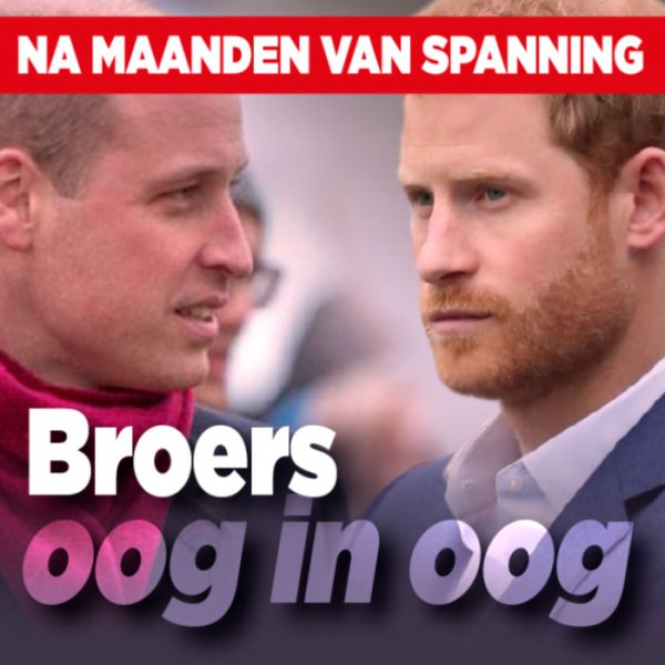 Prins William en prins Harry
