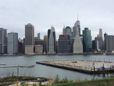 NYC in crisis
