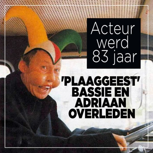 Plaaggeest