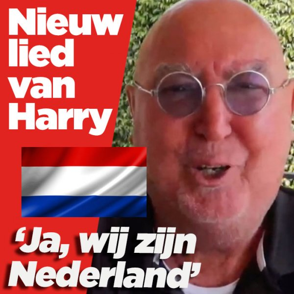 Harry Vermeegen