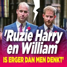 Ruzie Harry en William bereikt kookpunt