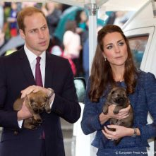 William en Catherine verwelkomen nieuwe pup in de familie